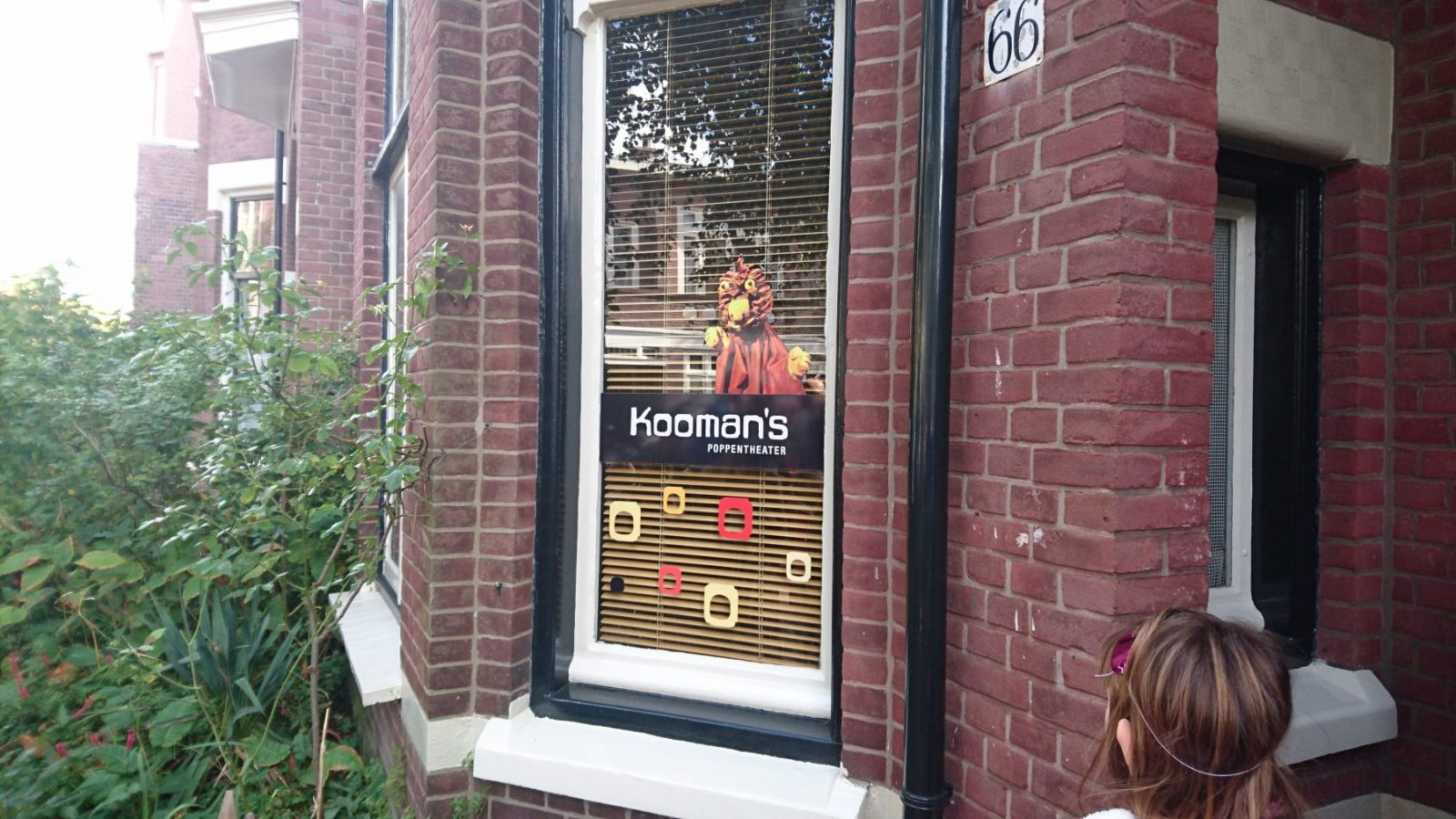 Kooman's
