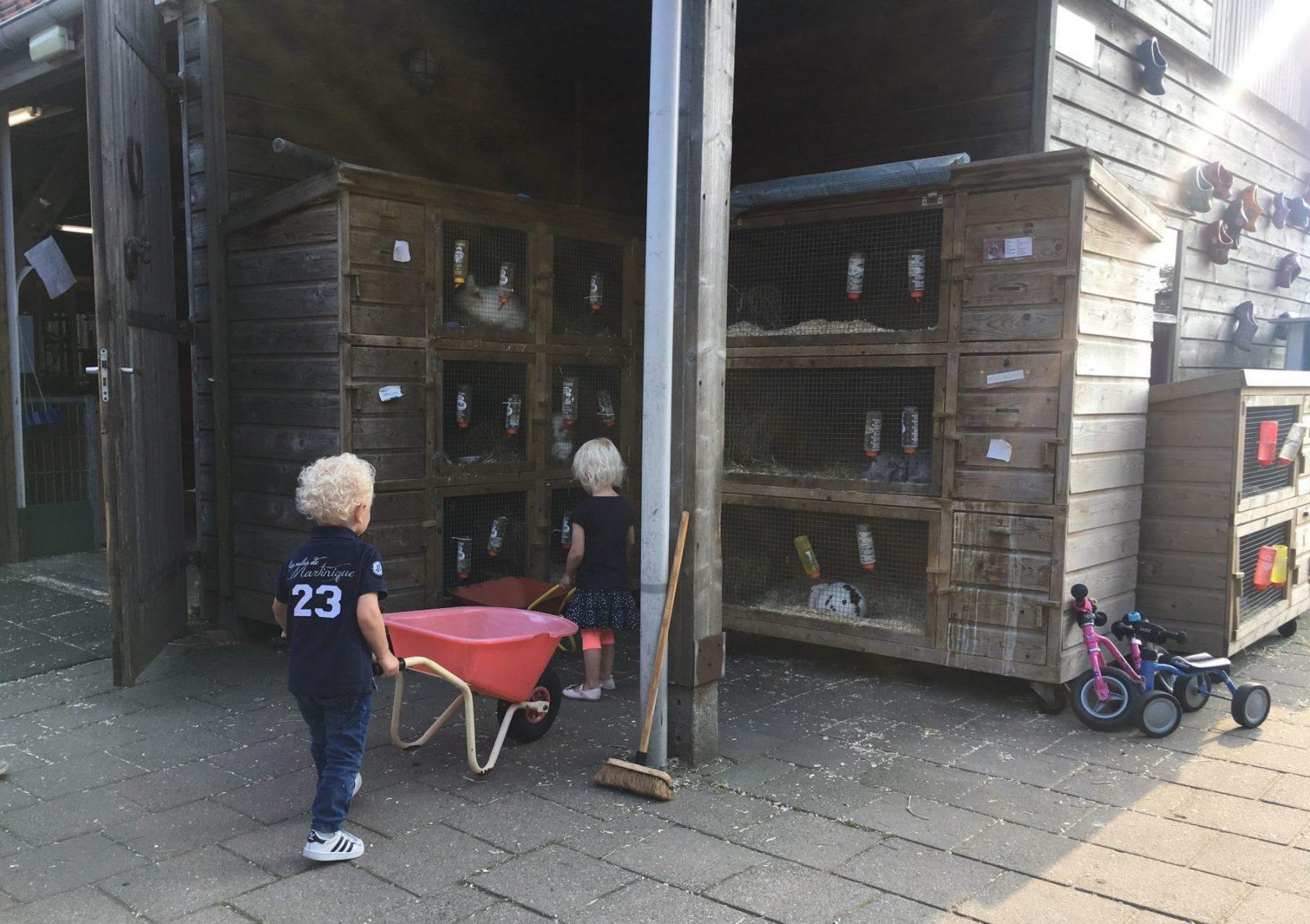 SKIP Naaldwijk